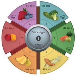 Online Wellness Program Portal
